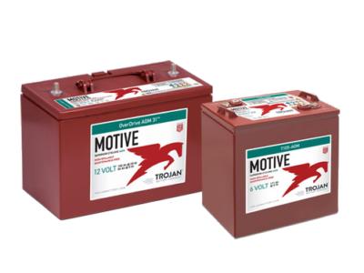 motive deep-cycle agm batteries